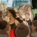 Bilder zur Sendung: Gro�e Oper f�r kleine Leute