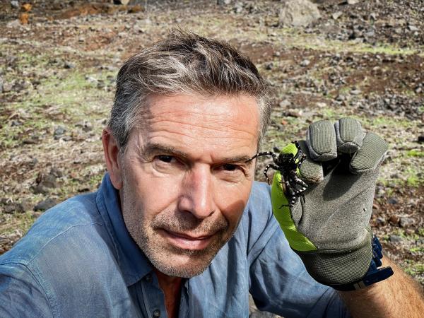 Bild 1 von 4: Dirk Steffens mit der größten Wolfsspinne Europas. Sie ist eine der seltensten Spinnen der Welt. Den Handschuh trägt er nicht ohne Grund, ihr Gift ist zwar nicht lebensgefährlich, aber ziemlich schmerzhaft.