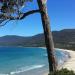 Tasmanien - Australiens grösste Insel