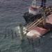 Bilder zur Sendung: Auf Leben und Tod - Kollision auf Hoher See