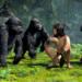 Bilder zur Sendung: Tarzan bei den Affen