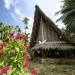 In den Tiefen des Pazifiks - Mantarochen und Muränen