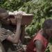 Kakao - ein schmutziges Geschäft