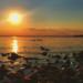 Bilder zur Sendung: Der Chiemsee - zwischen Beach und Bergalm