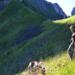 Bilder zur Sendung: Der Traum von der Alp