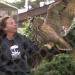 Verrückte Tierwelt - Tierische Tricks