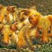 Niedersachsens kleine Helden - Hamster und Hasen