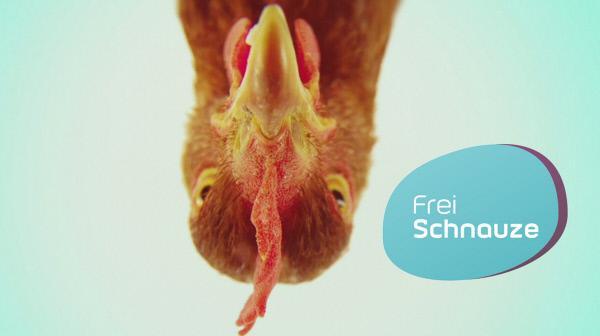 Bild 1 von 1: Kopf eines Huhns mit Sendungslogo.