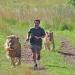 Der Löwenflüsterer