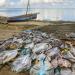 Vamizi - Artenreiches Korallenriff vor Ostafrikas Küste