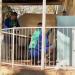 Der Teenager-Killer - Familiendrama in Südafrika