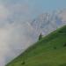 Über uns nur der Himmel - Almauftrieb in Kärnten und der Steiermark