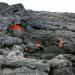 Leben mit Vulkanen