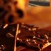 Caffee & Chocolade