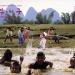 Shaolin Temple 2 - Kinder der Rache