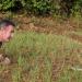 Bilder zur Sendung: Tödliche Schlangen - Expedition Indien