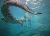 Tierisch tödlich - Willkommen in Australien 15