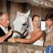 Utta Danella - Die Hochzeit auf dem Lande