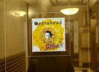 Die Welt, wie Radiohead sie sieht