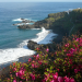 Die Kanarischen Inseln