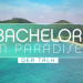 Bachelor in Paradise - Der Talk