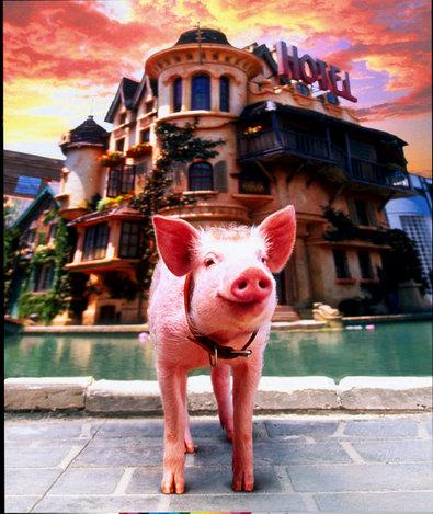 Schweinchen Babe in der gro�en Stadt