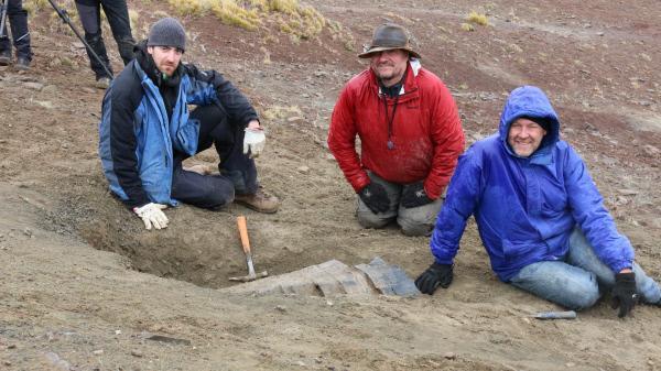 Bild 1 von 11: Das Paläontologen-Team bei der Arbeit. Manfred Vogt (l.), Eberhard Frey (M.) und Wolfgang Stinnesbeck (r.) graben nach Dinosaurierknochen im Süden der chilenischen Anden.