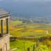 Bilder zur Sendung: Unentdeckte Mosel - R�mer, Wein und Wandern