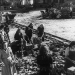 Wir Deutschen: Vom Reich zur Republik 1945-2005 (1)