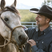 Die Geschichte von Pferd und Mensch