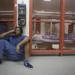 Bilder zur Sendung: Oakland County Jail - Die Geheimcodes der Gangs
