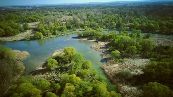 Bild 1 von 6: Die Isar ist einer der letzten Wildflüsse Europas. Im Mündungsgebiet breitet sie sich aus, wird langsamer, bis sie bei Deggendorf in die Donau fließt.