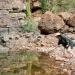 Mystery Road - Verschwunden im Outback