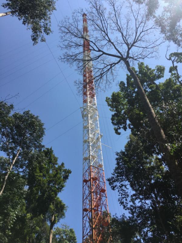 Bild 1 von 10: Der Atto-Turm im brasilianischen Regenwald ist mit 325 Metern Höhe der höchste Klimamessturm der Welt. Hier wird die Atmosphäre über dem Regenwald vermessen.