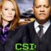 Bilder zur Sendung: CSI - Den T�tern auf der Spur