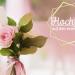Hochzeit auf den ersten Blick - Die spannendsten TV-Momente