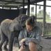 Naledi - Ein Elefantenleben