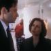 Bilder zur Sendung: Akte X - Die unheimlichen Fälle des FBI