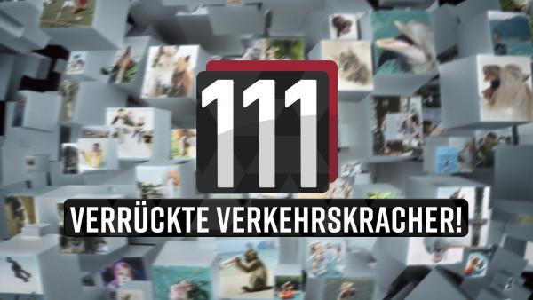 Bild 1 von 1: 111 verrückte Verkehrskracher! - Logo