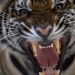 Tierische Krawallmacher - Schlechte Manieren