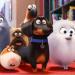 Bilder zur Sendung: Pets