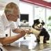 Bilder zur Sendung: Hautnah: Die Tierklinik