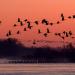 Die Wildnis der USA: Vier Jahreszeiten