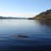Bilder zur Sendung: DOKUPEDIA: Mythos Loch Ness