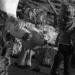 Bilder zur Sendung: 18 Kühe zwischen zwei Fronten