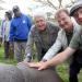 Die Retter der Nashörner