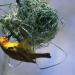 Bilder zur Sendung: David Attenboroughs Wunder der Natur