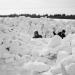 Sechs Tage Eiszeit - Der Katastrophenwinter 1978/79