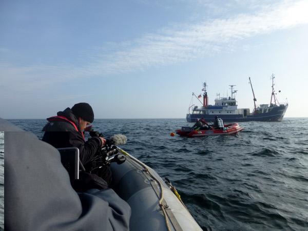Bild 1 von 1: In der Kieler Förde werden weit mehr als 100 000 Schiffswracks weltweit vermutet.