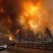 Tödliche Naturgewalten - Waldbrände